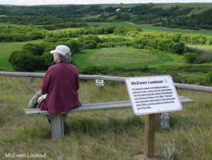 LumsdenMcEwen_lookout