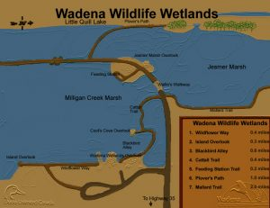 Wetlands_Map2