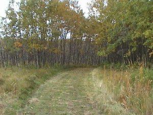 neudorf trail 3